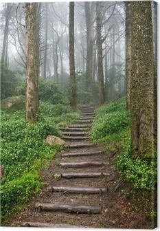 Leinwandbild Waldweg
