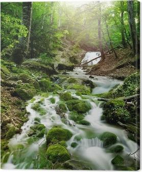 Leinwandbild Wasserfall im Wald