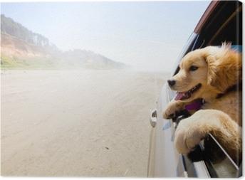 Leinwandbild Welpe, der aus dem Fenster eines Autos schaut