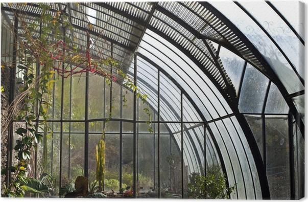 Leinwandbild Wintergarten, Gewächshaus, Garten, Pflanzen, Haus ...