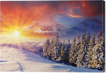 Leinwandbild Winterlicher