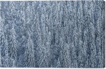 Leinwandbild Winterwald