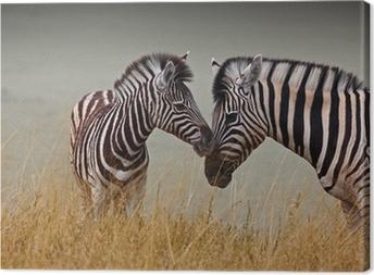 Leinwandbild Zebras - Mutter und Sohn