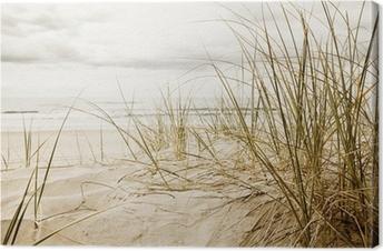 Lerretbilde Nærbilde av et høyt gress på en strand i overskyet årstid