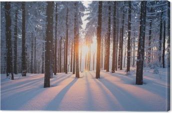Lerretbilde Solnedgang i skogen i vinterperioden