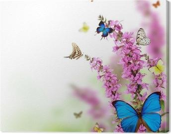 Lerretbilde Vakker blomst bakgrunn med eksotiske sommerfugler