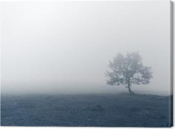 Lerretsbilde Ensomt tre med tåke