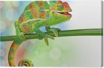Lerretsbilde Kameleon og farger