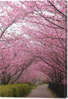 Lerretsbilde Sakura arch