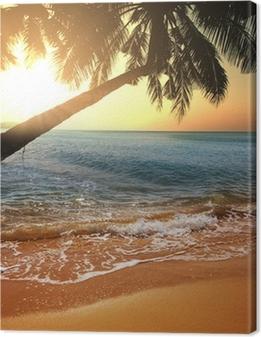 Lerretsbilde Tropisk strand