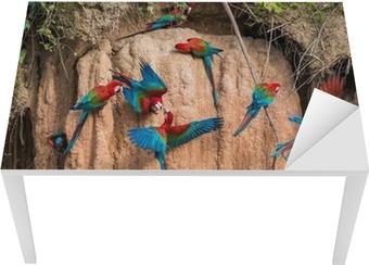 Masa Çıkartması Madre de Di de Perulu Amazon ormanda kil yalamak içinde macaws