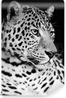 Mural de Parede Autoadesivo Leopard