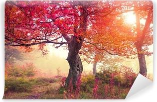 Mural de Parede em Vinil autumn forest