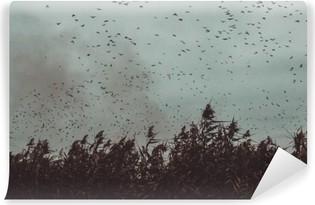 Mural de Parede em Vinil Bando de pássaros voando perto de cana num estilo vintage-céu escuro preto e branco