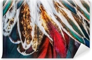 Mural de Parede em Vinil Brilhante grupo pena marrom de um pássaro