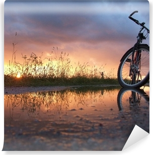 Mural de Parede em Vinil Bycicle in the puddle