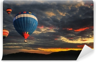 Mural de Parede em Vinil Colorful hot air balloon