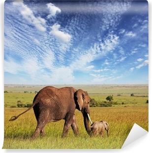 Mural de Parede em Vinil Elephant