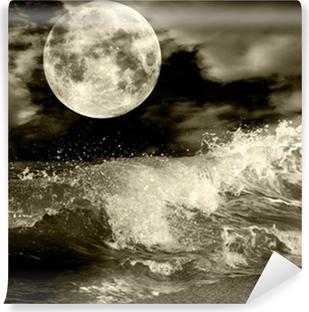 Mural de Parede em Vinil Full moon