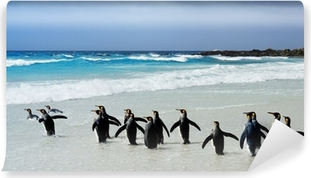 Mural de Parede em Vinil King Penguins