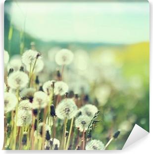 Mural de Parede Lavável Photo presenting field of dandelions