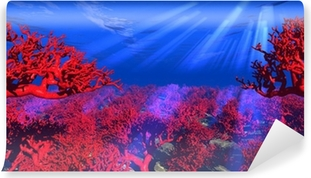 Mural de Parede Lavável rote Korallen unter Wasser