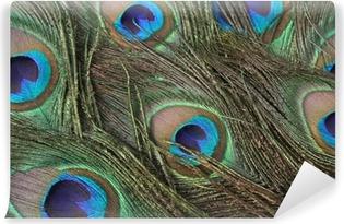 Mural de Parede em Vinil peacock feathers