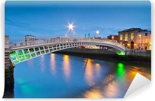 Mural de Parede em Vinil The ha'penny bridge in Dublin at night, Ireland