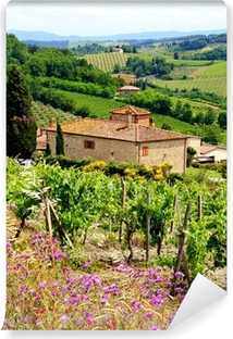 Mural de Parede em Vinil View through vineyards with stone house, Tuscany, Italy