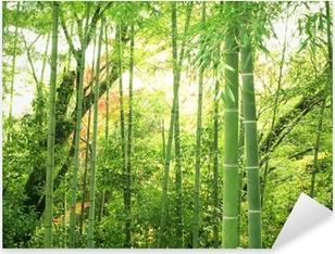 Naklejka Pixerstick Bambus lesie