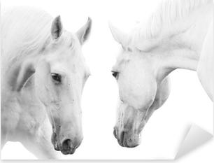 Naklejka Pixerstick Białe konie