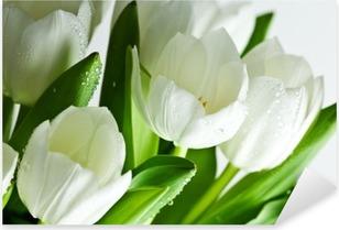 Naklejka Pixerstick Białe tulipany