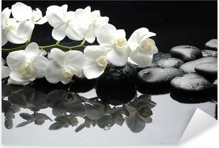 Naklejka Pixerstick Bliska Biała orchidea z kropli wody z kamienia