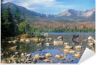 Naklejka Pixerstick Bull Moose karmienia w stawie poniżej: Mount Katahdin, Maine