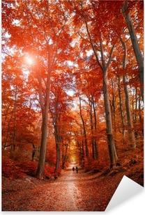 Naklejka Pixerstick Droga przez parku jesienią unde słońcu
