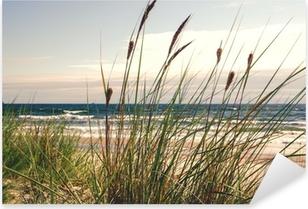 Naklejka Pixerstick Dune trawy w świetle poranka :)