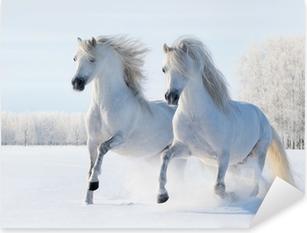 Naklejka Pixerstick Dwa białe konie galopujące w śniegu