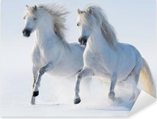 Naklejka Pixerstick Dwa galopujący śnieżnobiałe konie