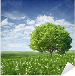 Naklejka Pixerstick Letni krajobraz z zielonym drzewem