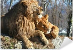 Naklejka Pixerstick Lew i lwica