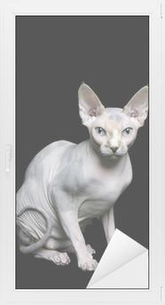 Naklejka Sfinks Kot Pixers żyjemy By Zmieniać