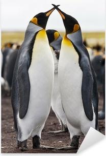 Naklejka Pixerstick Pary królewskie pingwiny