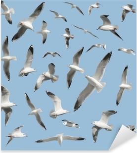 Naklejka Pixerstick Ptak na niebie