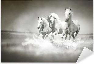 Naklejka Pixerstick Stado białych koni biegnących przez wody