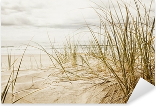 Naklejka Pixerstick Wysokie trawy na plaży w zbliżeniu