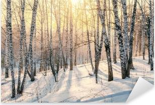 Naklejka Pixerstick Zachód słońca w zimowym lesie