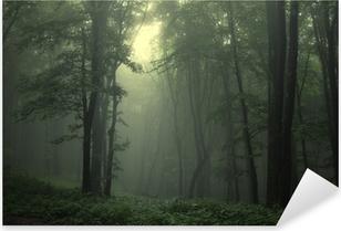 Naklejka Pixerstick Zielony las po deszczu