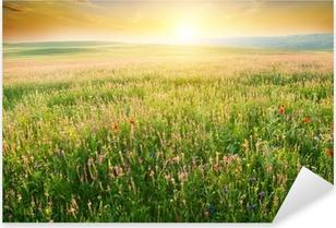 Nálepka Pixerstick Jarní louka fialového květu.