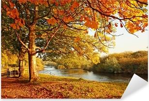 Nálepka Pixerstick Krásné Podzim v parku