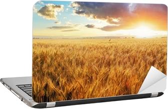 Nálepka na Notebook Západ slunce nad pšeničné pole.